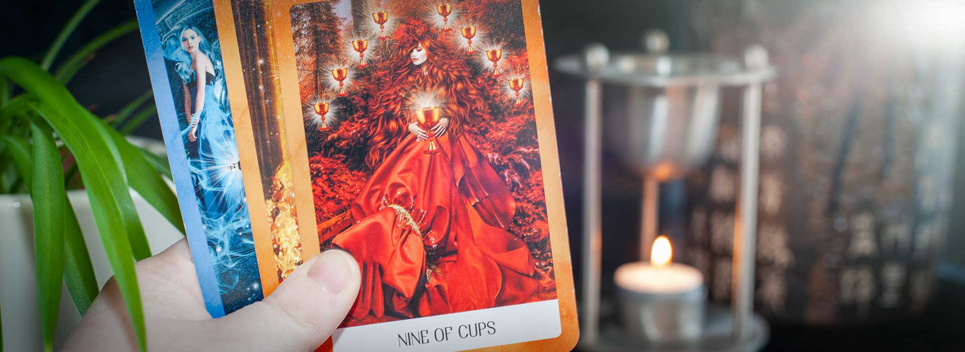 Tarot reading in Liverpool and online